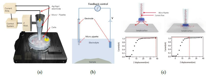 Figure 1: The snapshots showing the (a) SICM hardware setup, (b) circuit mechanism and (c) current-distance relationship between the pipette end and the sample surface.